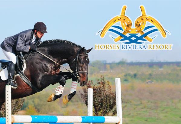 Hotel Lido Cattolica Riviera Horses